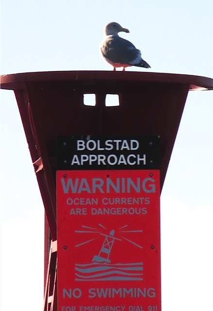 Bolstadt approach buoy
