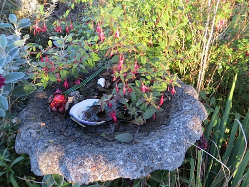 birdbath draped with fuchsia