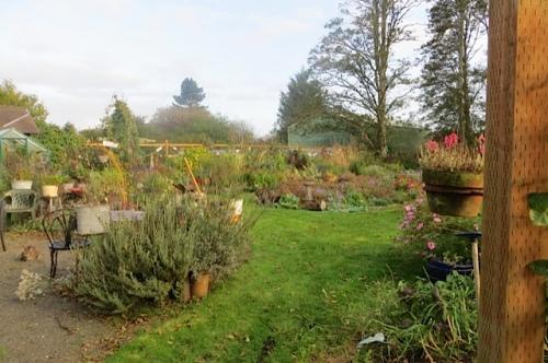 through a west gate: the autumn garden
