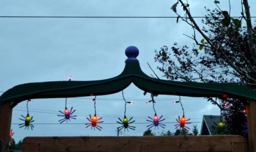 spider lights