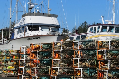 crab pots by the storage boatyard