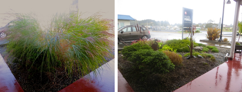 before and after, in foul working weather