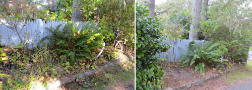 before and after, outside the fence