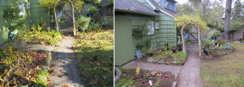 inside the fence, before and after
