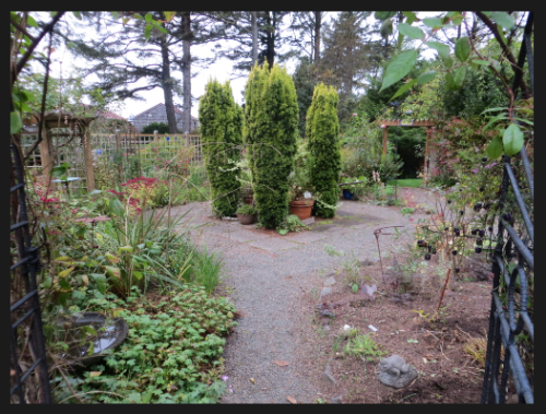 looking into the fenced garden