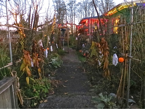 spooky plant walkway for trick or treaters