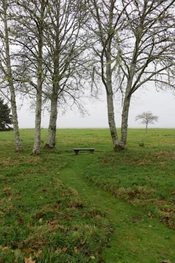 bay view bench