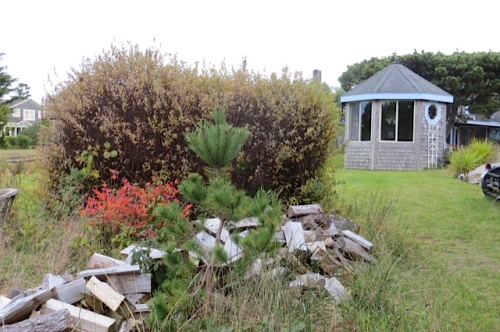 signs of autumn at the Boreas...bright blueberry foliage and a firewood delivery