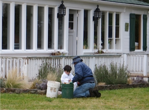Erin's son took an interest in the bulb planting.