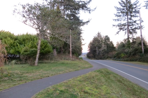 looking east to Willapa Bay