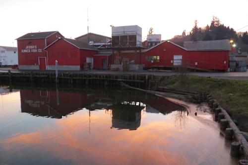 Jessie's Ilwaco Fish Company