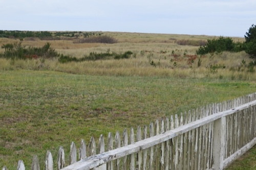 over the picket fence, the dunes, and then the beach