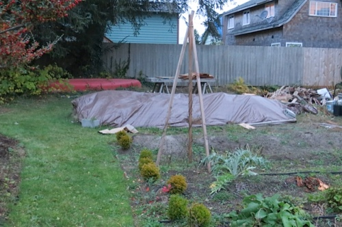 Mount Sod, covered