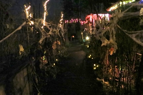 our Corridor of Spooky Plants with candles