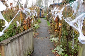 the webbing of the Corridor of Spooky Plants