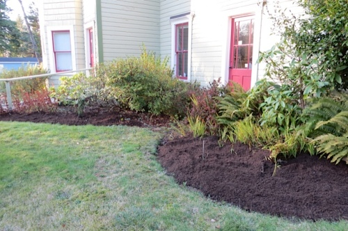 """newly cleared beds, """"bulbed"""" last week"""