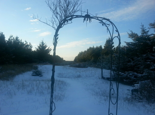 Boreas, looking west from the end of the garden