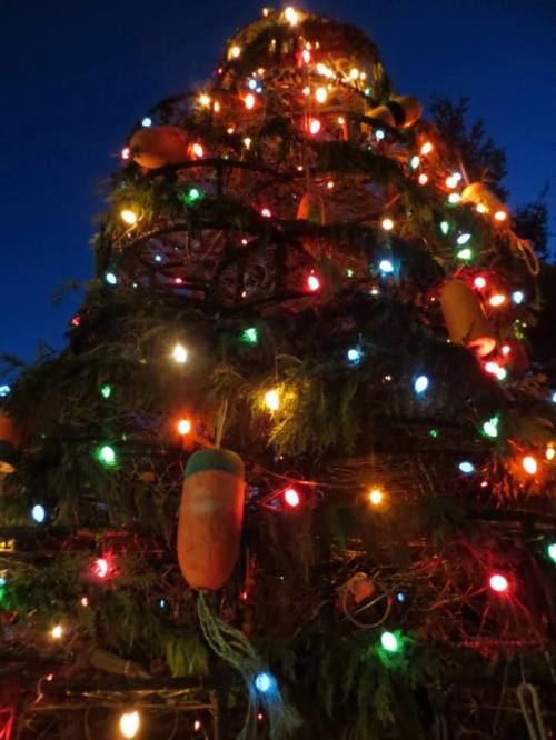 Crab pot tree, with your buoys and lights...