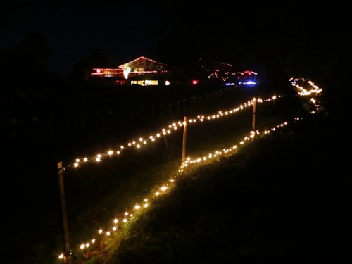 driveway lights with house in background