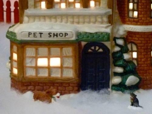 I can guarantee the pet shop sells pet supplies, not animals.