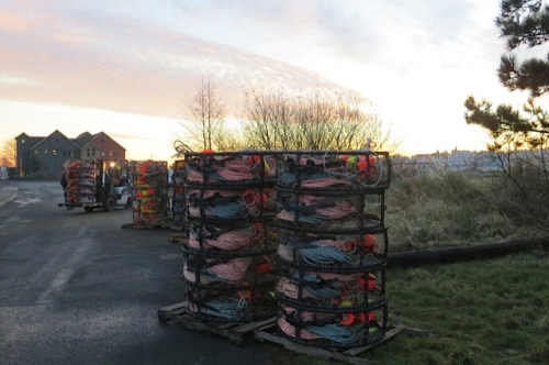 stacking Dungeness crab pots
