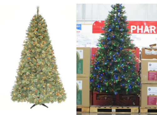Martha tree and the Costco tree
