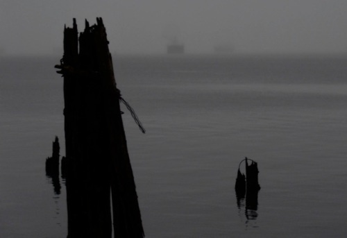 Allan's photo of ships in the fog