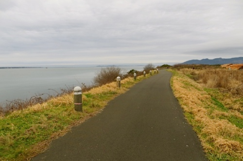 Path along Youngs Bay on the Columbia River