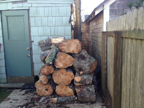 and the rounds from Danger Tree stacked at New Judy's waiting for rental of a log splitter