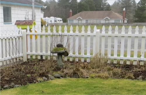 picket fence garden...Wait, what's wrong with the birdbath?