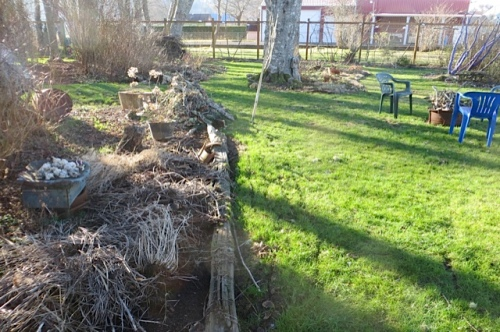 south end of lawn by bogsy wood, before