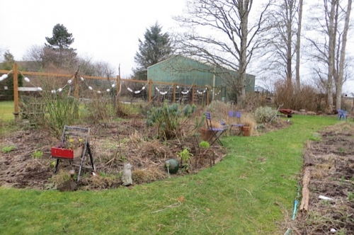 the big east bed and lawn, tidied up