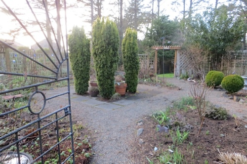 looking into the tidied fenced garden