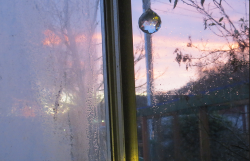 view from my desk; one pane is permanently fogged.