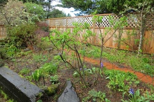 before, entry garden