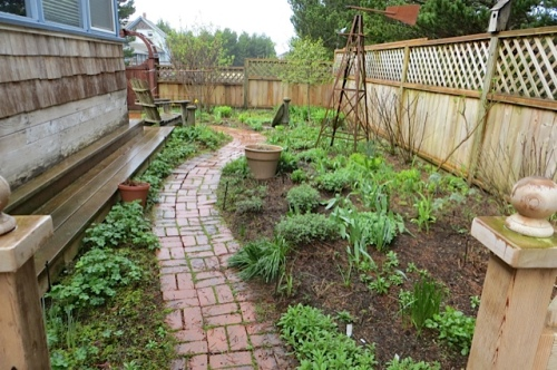 before, north west garden bed