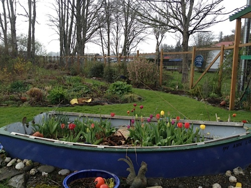 the garden boat...with less sunshine!