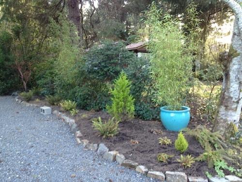 Ed's front garden