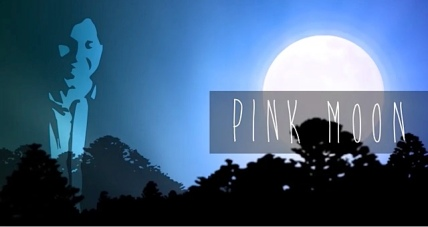 Pink, pink, pink, pink moon....