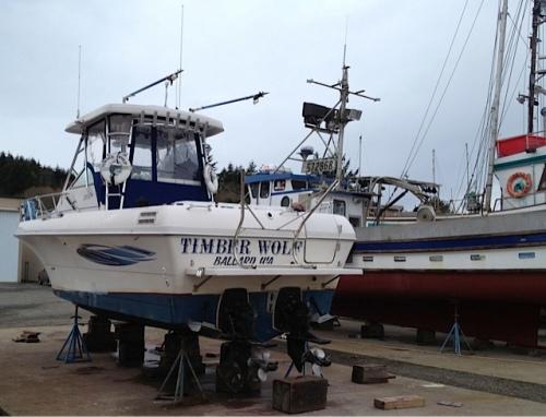 Timber Wolf from Ballard