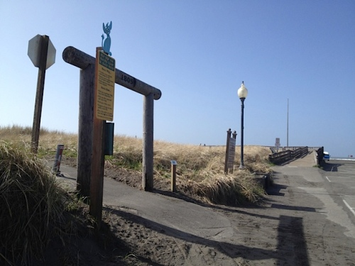 Looking west: There's a planter between the Discovery Trail and the boardwalk.