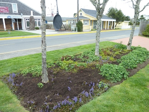 Allan did a good job and we added some mulch from the city works yard.