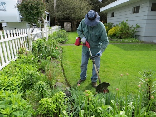 Allan's weedeating method saves me from having to cut an edge with the half moon edger.