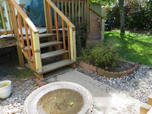 the little bit of landscaping that we did in the back yard...