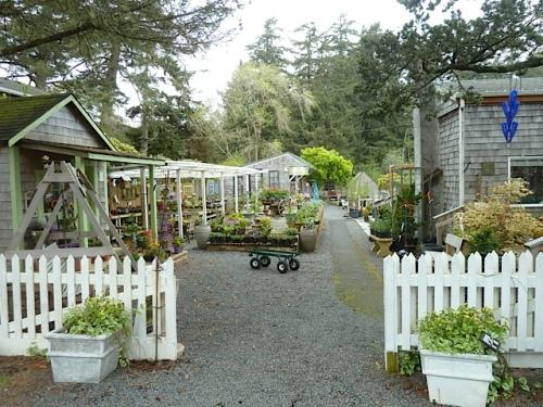 Back Alley Gardens