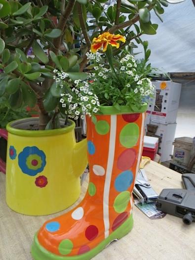 Next:  The Basket Case Greenhouse.