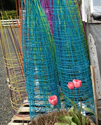 colourful tomato cages