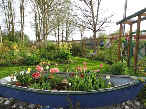 our garden boat, the Ann Lovejoy