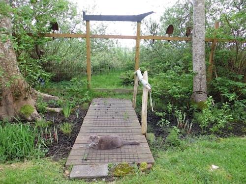 bogsy wood bridge to south gate