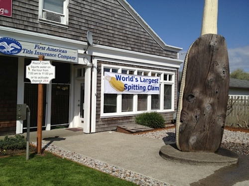 The signs have been unveiled for tomorrow's dedication of the spitting clam.
